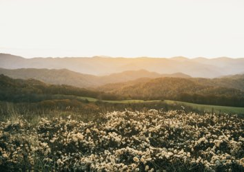 5 Reasons to Hike Max Patch Near Asheville, NC