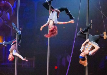 Your Guide to the Top 5 Dinner Shows in Sevierville, TN