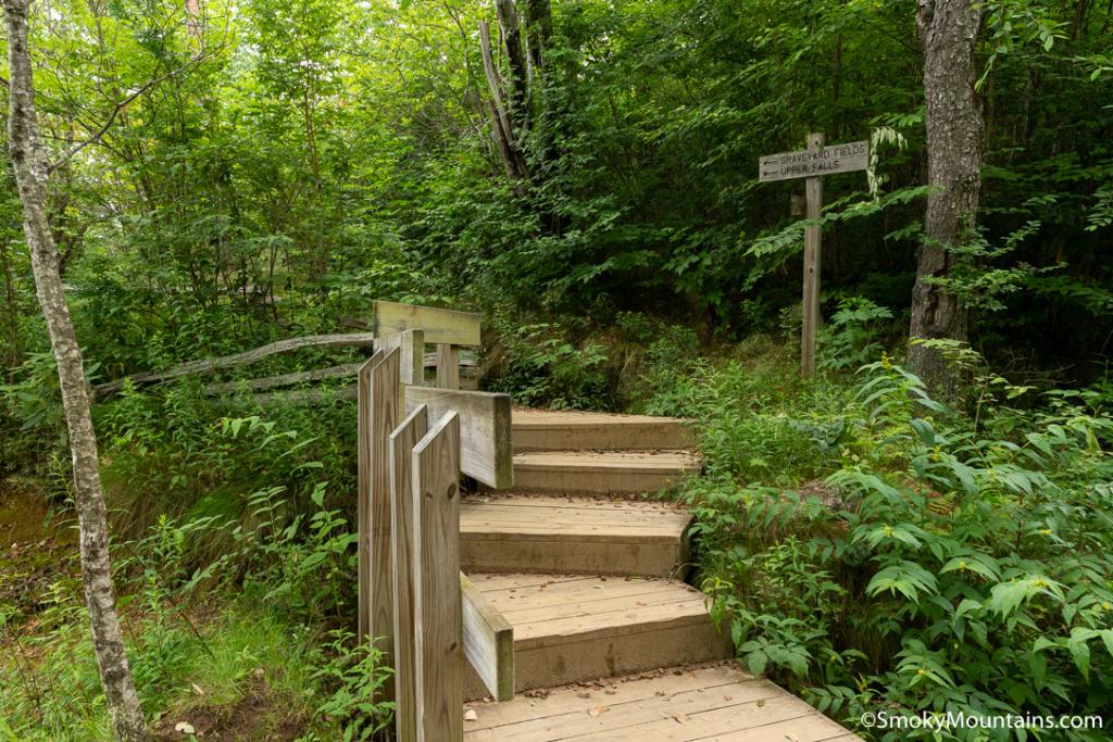 Asheville Hikes - Graveyard Fields Loop - Original Photo