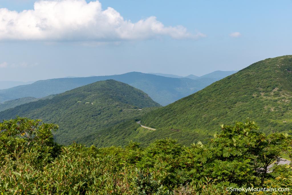 Asheville Hikes - Craggy Pinnacle Hike - Original Photo