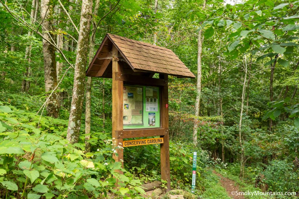 Asheville Hikes - Trombatore Trailhead - Original Photo