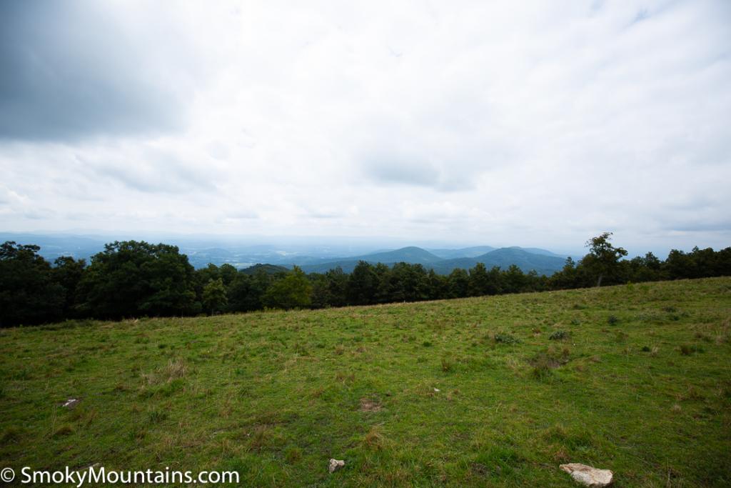 Asheville Hikes - Little Bearwallow Trail - Original Photo