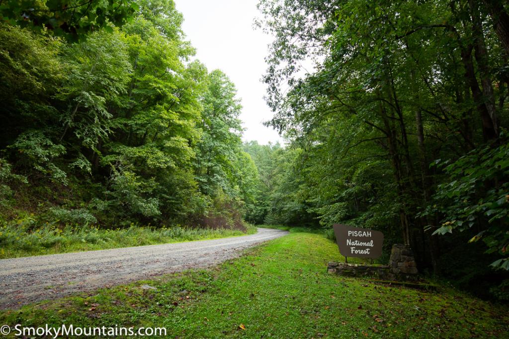 Asheville Hikes - Max Patch - Original Photo