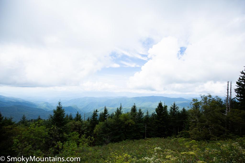 Asheville Hikes - Waterrock Knob - Original Photo