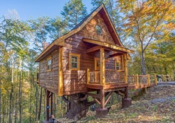 3 Incredible Treehouse Rentals in the Smoky Mountains